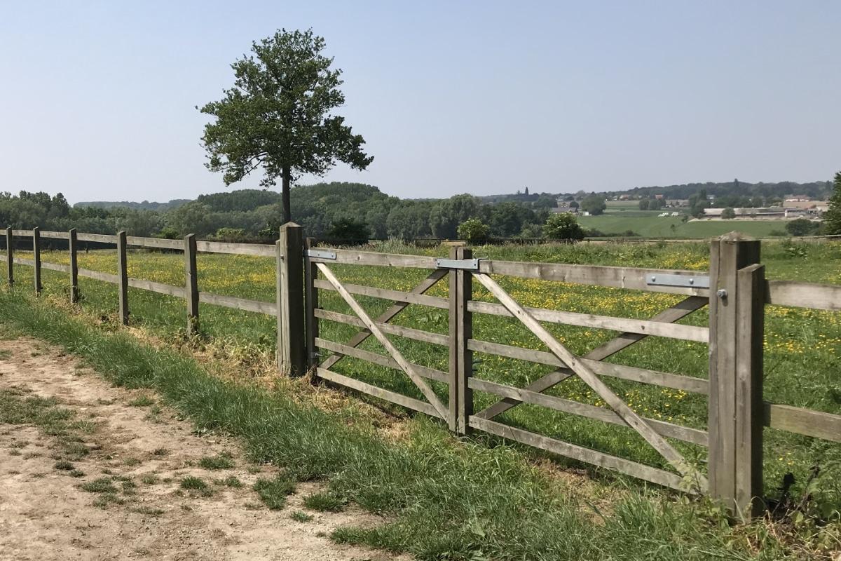 poort kastanjehout